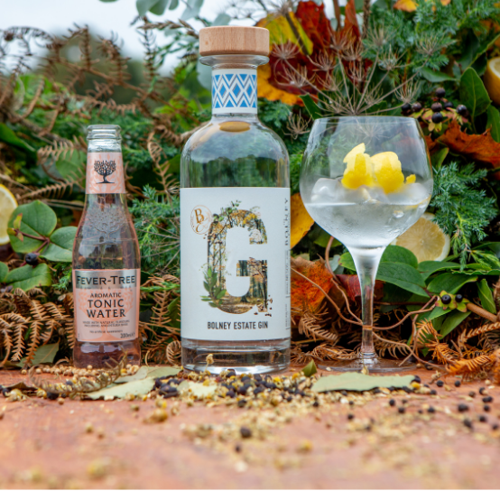 Bolney Wine Estate Gin perfect serve with aromatic tonic